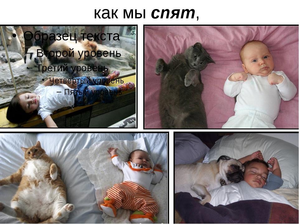 как мы спят,