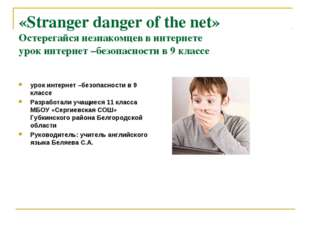 «Stranger danger of the net» Остерегайся незнакомцев в интернете урок интерне