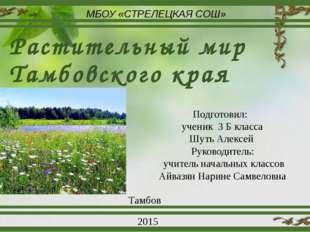Растительный мир Тамбовского края МБОУ «СТРЕЛЕЦКАЯ СОШ» Подготовил: ученик 3
