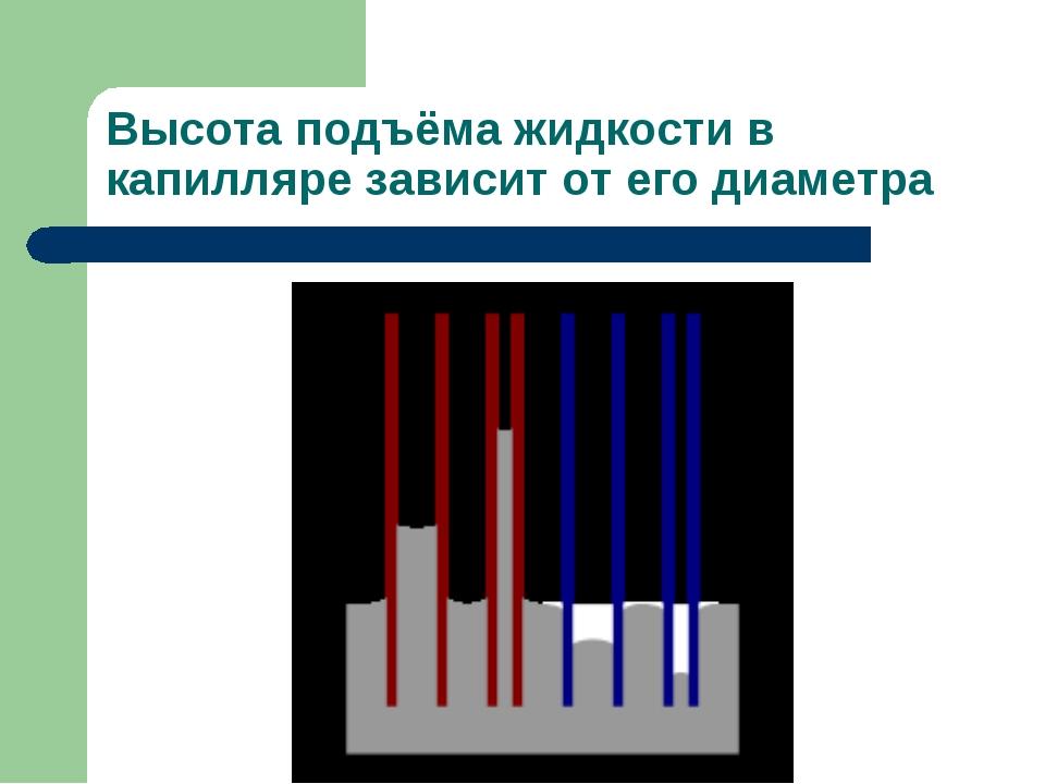 Высота подъёма жидкости в капилляре зависит от его диаметра