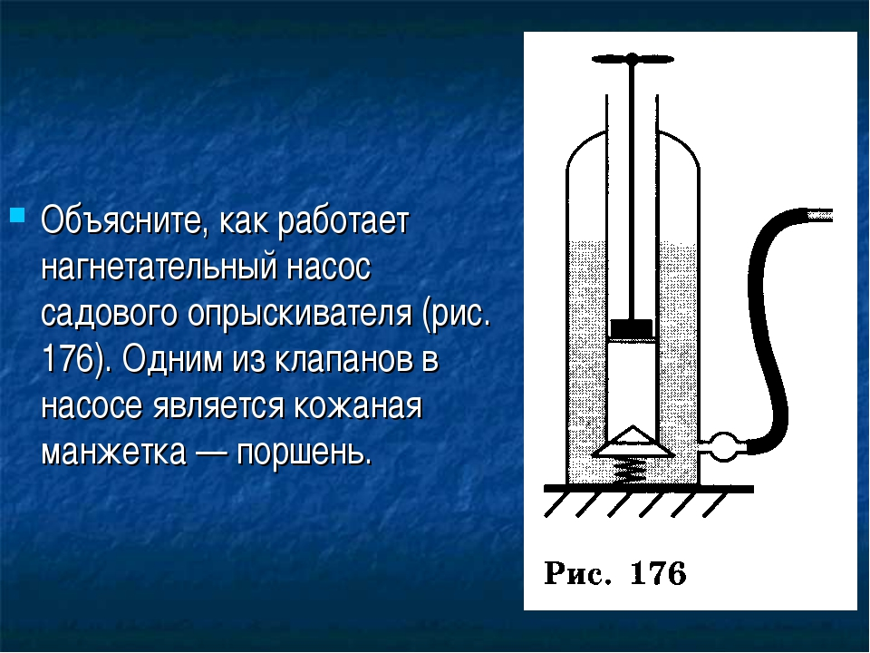 Объясните, как работает нагнетательный насос садового опрыскивателя (рис. 176...