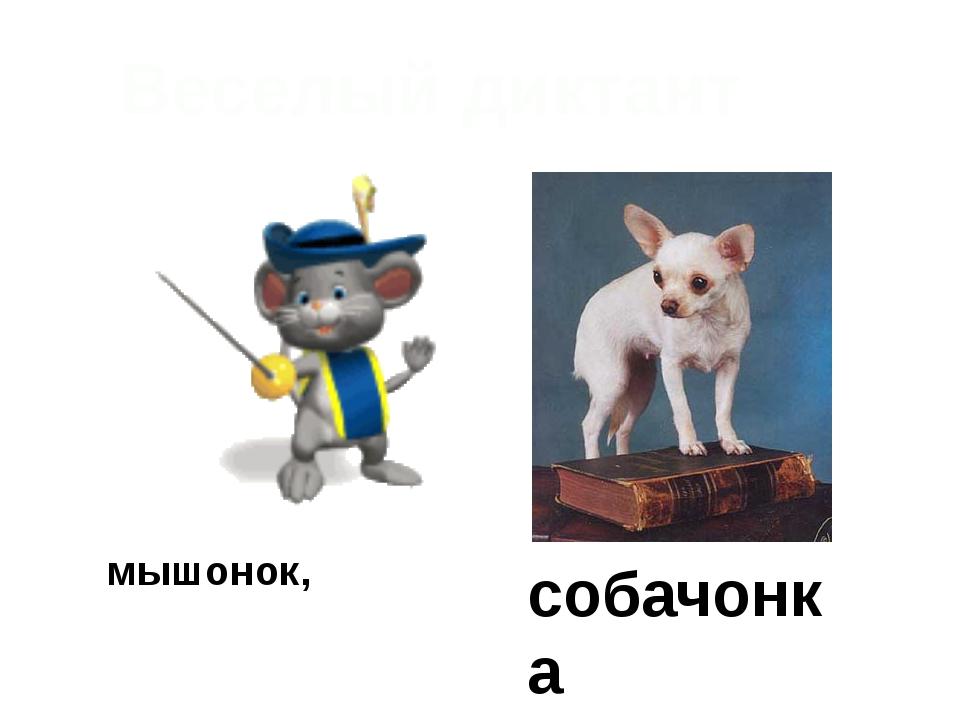 мышонок, собачонка Веселый диктант
