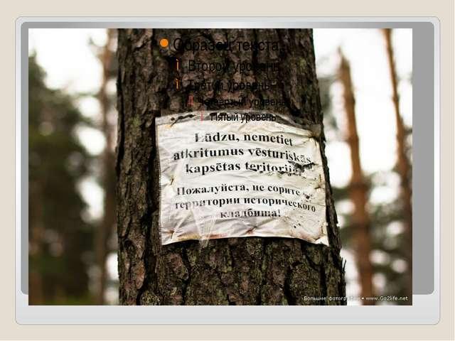 Пожалуйста, не сорите на территории исторического кладбища