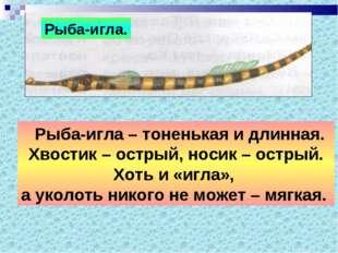 Рыба-игла. Рыба-игла – тоненькая и длинная. Хвостик – острый, носик – острый.