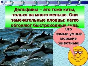 Дельфины – это тоже киты, только на много меньше. Они замечательные пловцы: л