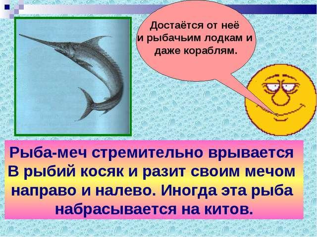 Рыба-меч стремительно врывается В рыбий косяк и разит своим мечом направо и н...