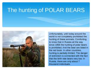 The hunting of POLAR BEARS Unfortunately, until today around the world is not