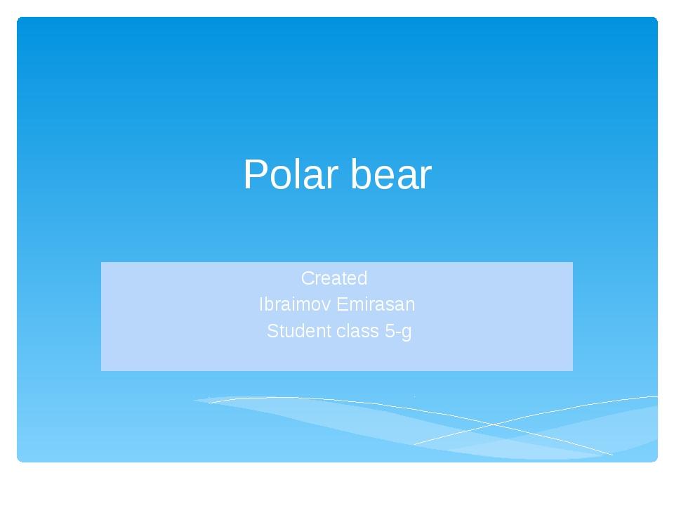 Polar bear Сreated Ibraimov Emirasan Student class 5-g
