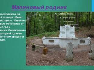 Малиновый родник Родник расположен на Кумысной поляне. Имеет богатую историю.