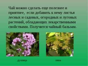 Чай можно сделать еще полезнее и приятнее, если добавить к нему листья лесных
