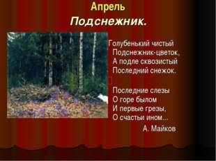 Апрель Подснежник. Голубенький чистый Подснежник-цветок, А подле сквозистый П
