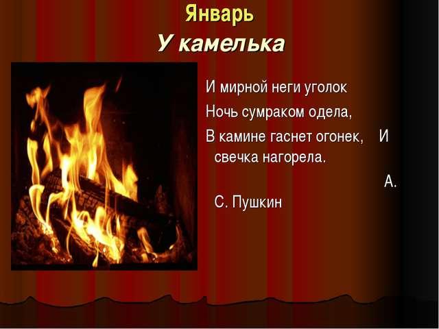 Январь У камелька И мирной неги уголок Ночь сумраком одела, В камине гаснет о...