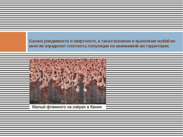 Баланс рождаемости и смертности, а также вселение и выселение особей во мног...