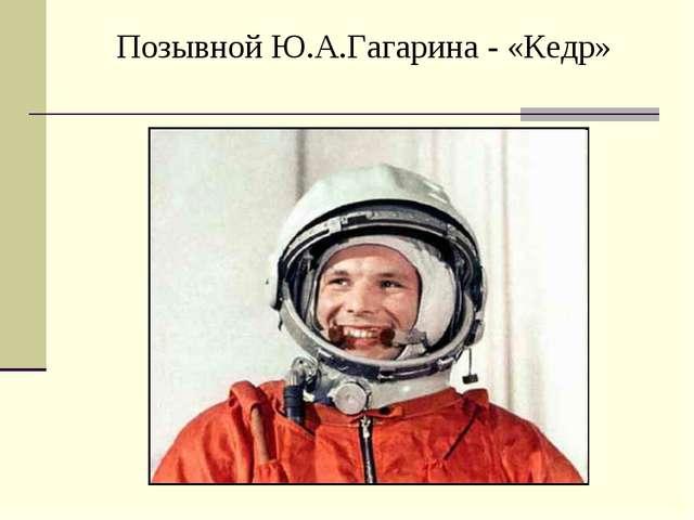 Позывной Ю.А.Гагарина - «Кедр»