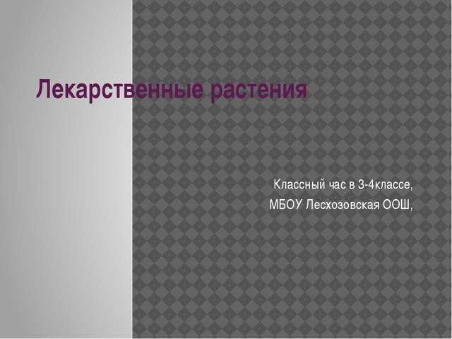 Лекарственные растения Классный час в 3-4классе, МБОУ Лесхозовская ООШ,