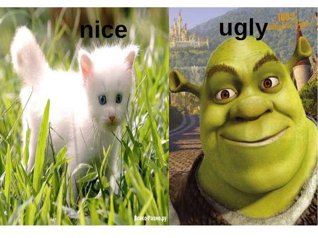 nice ugly