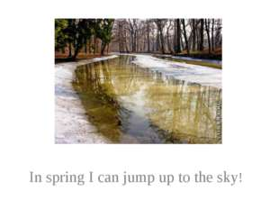In spring I can jump up to the sky!