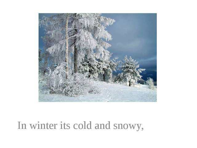 In winter its cold and snowy,