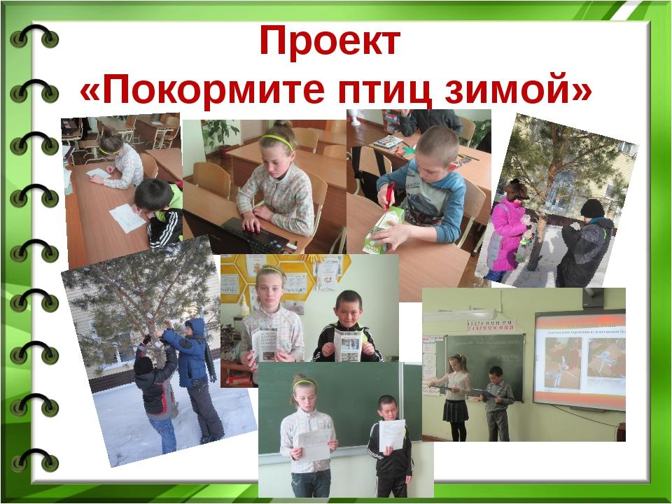 Проект «Покормите птиц зимой»