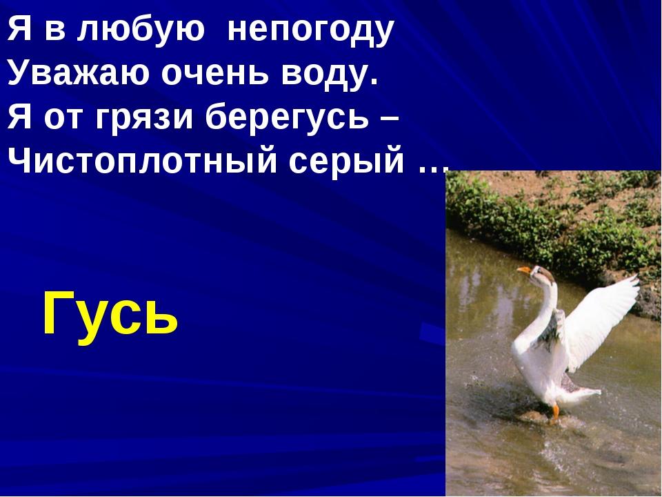 Я в любую непогоду Уважаю очень воду. Я от грязи берегусь – Чистоплотный серы...
