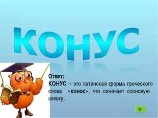 Ответ: КОНУС – это латинская форма греческого слова «конос», что означает сос