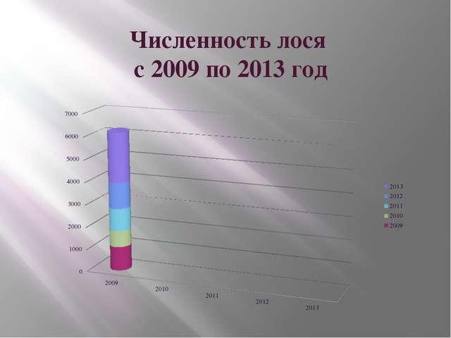 Численность лося с 2009 по 2013 год