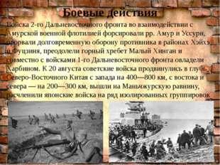 Боевые действия . Войска 2-го Дальневосточного фронта во взаимодействии с Аму