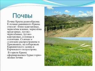 Почвы Почвы Крыма разнообразны. К почвам равнинного Крыма относят: тёмно-кашт