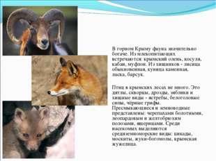Фауна В горном Крыму фауна значительно богаче. Из млекопитающих встречаются: