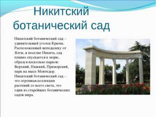 Никитский ботанический сад Никитский ботанический сад – удивительный уголок К