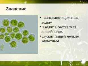 Значение  вызывают «цветение воды» входят в состав тела лишайников. служит