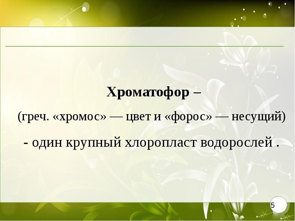 Хроматофор – (греч. «хромос» — цвет и «форос» — несущий) - один крупный х...