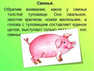 Свинья. Обратим внимание, какое у свиньи толстое туловище. Оно овальное, хвос