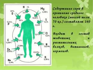 Содержание серы в организме среднего человека (массой тела 70 кг.) составляет