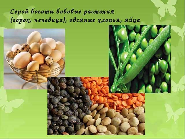 Серой богаты бобовые растения (горох, чечевица), овсяные хлопья, яйца