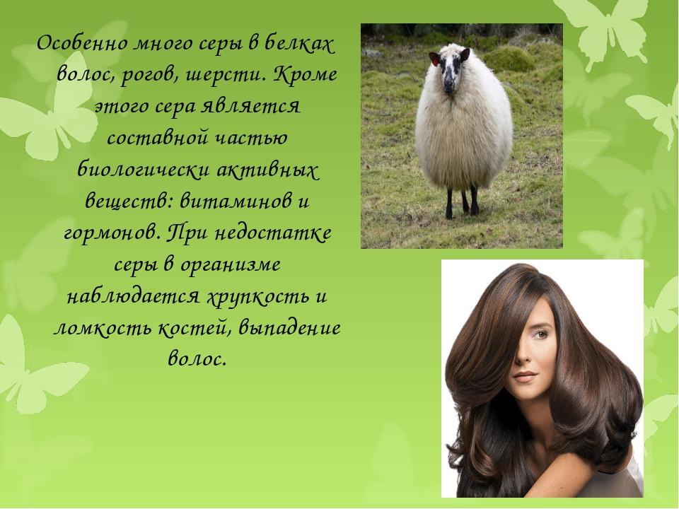 Особенно много серы в белках волос, рогов, шерсти. Кроме этого сера является...