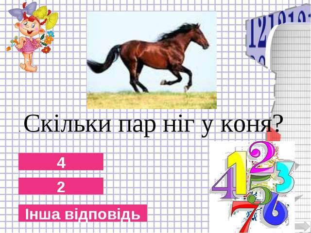 2 4 Інша відповідь . Скільки пар ніг у коня?
