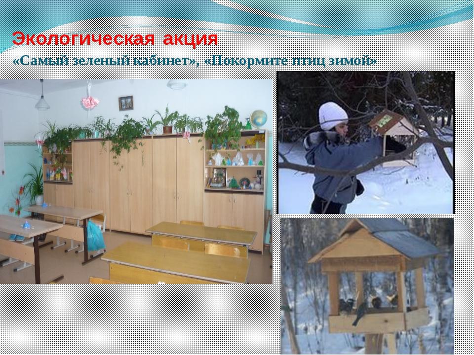 Экологическая акция «Самый зеленый кабинет», «Покормите птиц зимой»