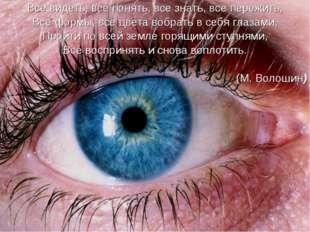 Все видеть, все понять, все знать, все пережить, Все формы, все цвета вобрать