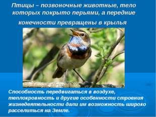Птицы – позвоночные животные, тело которых покрыто перьями, а передние конечн