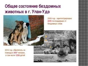 Общее состояние бездомных животных в г. Улан-Удэ 2009 год- зарегистрировано 2