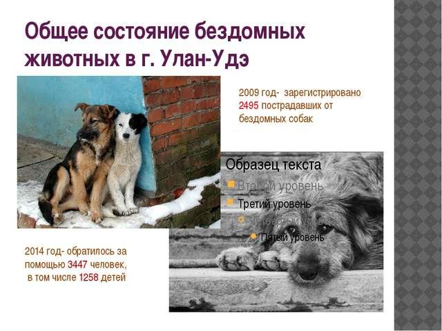 Общее состояние бездомных животных в г. Улан-Удэ 2009 год- зарегистрировано 2...