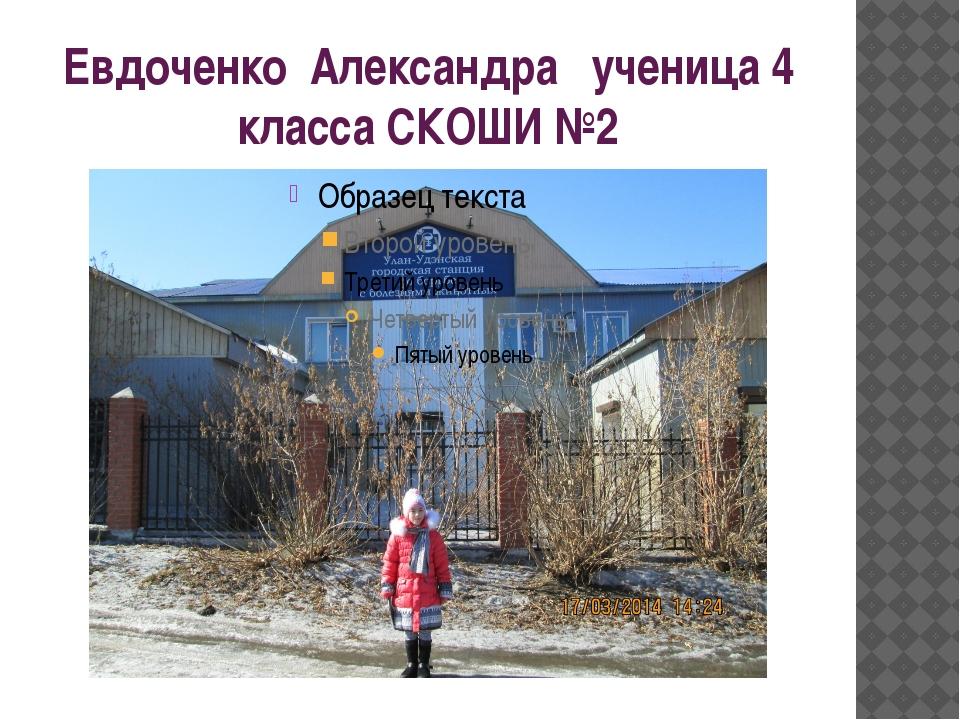 Евдоченко Александра ученица 4 класса СКОШИ №2