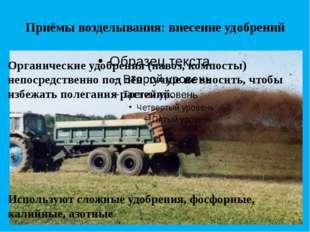 Приёмы возделывания: внесение удобрений Органические удобрения (навоз, компос