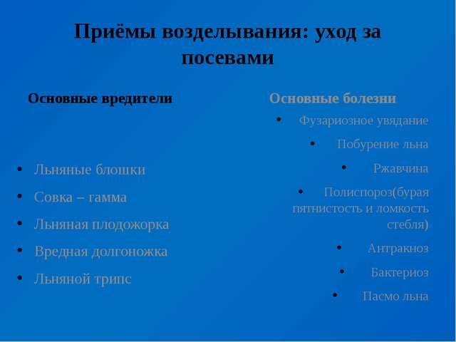 Приёмы возделывания: уход за посевами Основные вредители Льняные блошки Совка...