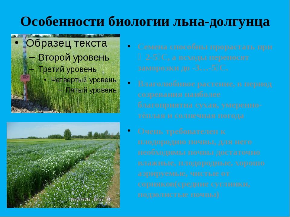 Особенности биологии льна-долгунца Семена способны прорастать при Ɫ 2-5⁰С, а...