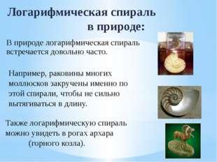 Логарифмическая спираль в природе: Например, раковины многих моллюсков закруч