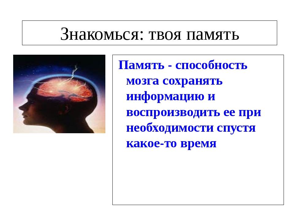 Знакомься: твоя память Память - способность мозга сохранять информацию и вос...