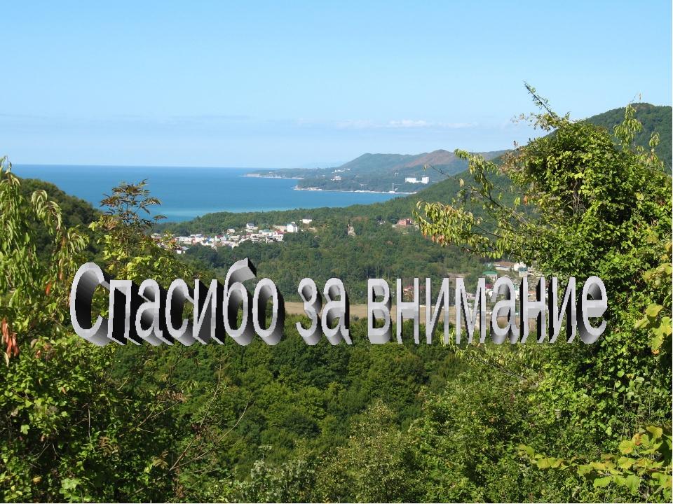 МОУ СОШ №19 с.Ольгинка Ерещенко Галина Евгеньевна