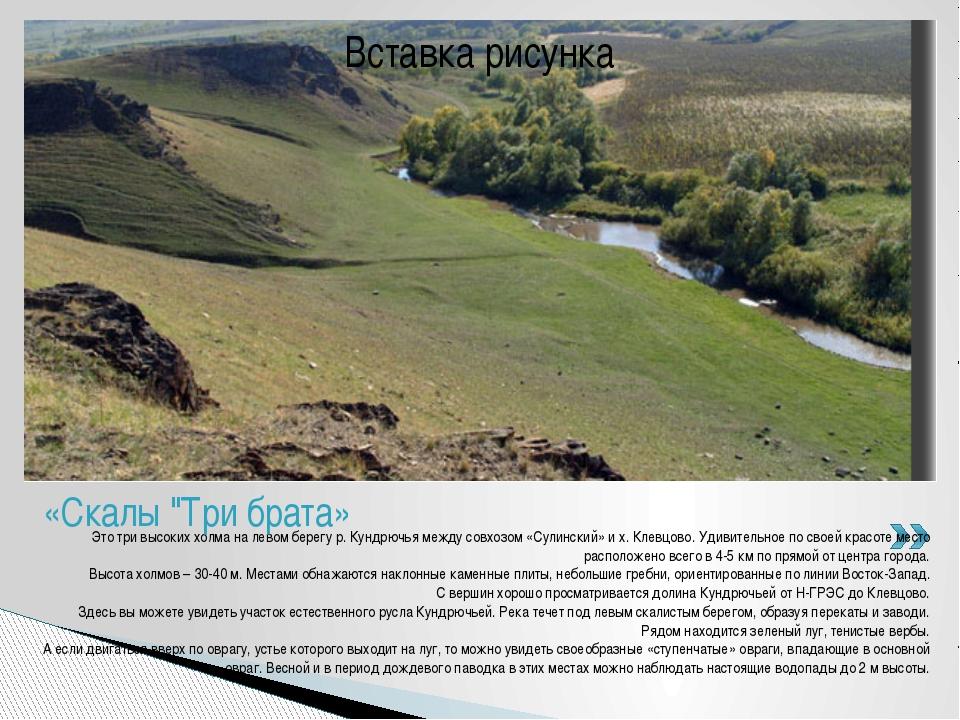 Это три высоких холма на левом берегу р. Кундрючья между совхозом «Сулинский»...